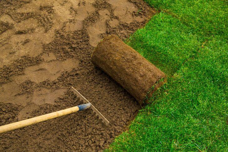 Trawnik w rolce - podłoże