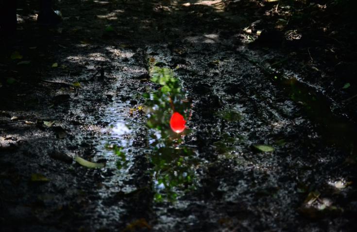 Wodne oświetlenie ogrodowe