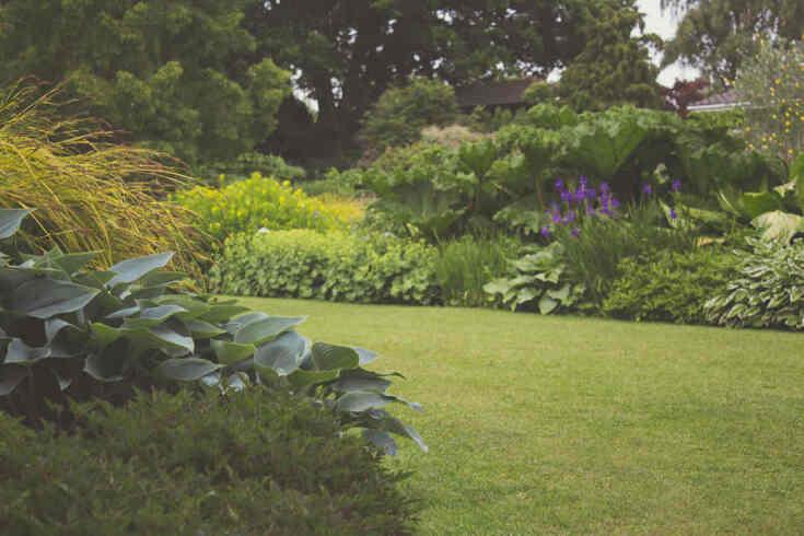 Jak zaprojektować ogród o nieregularnym kształcie?