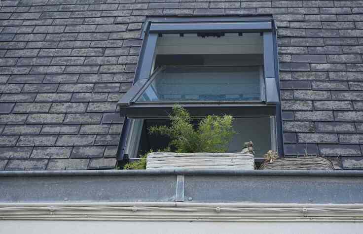 Co zrobić, by na dachu nie pojawił się mech