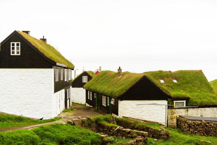 Zielony dach - jaka elewacja