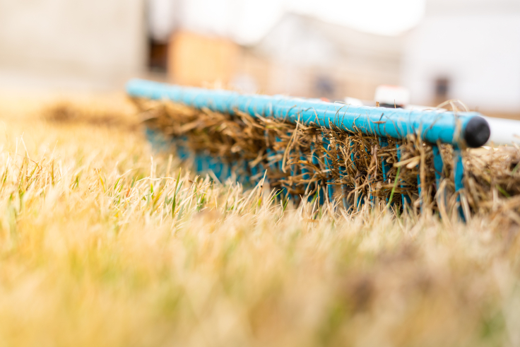 Wertykulacja trawnika wiosną
