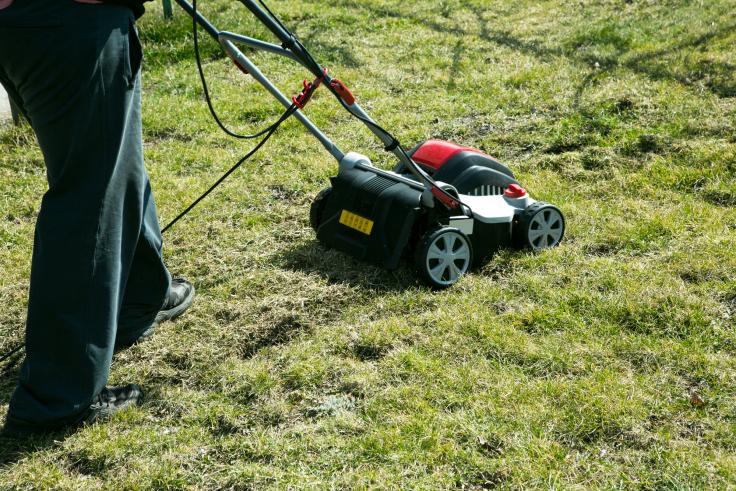 Wertykulacja trawnika w ogrodzie
