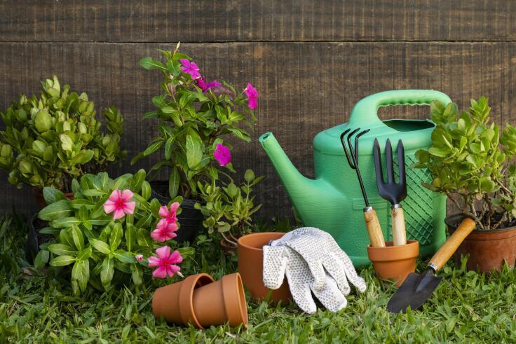 Aranżowanie ogrodu