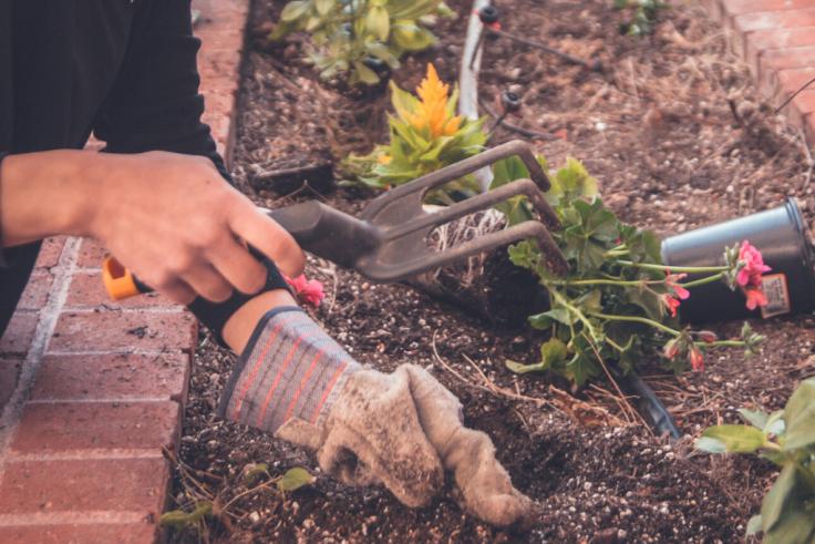 Jak ciekawe zaaranżować ogród