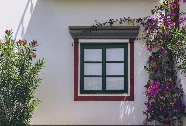 Jakie wyróżniamy rodzaje ścian?
