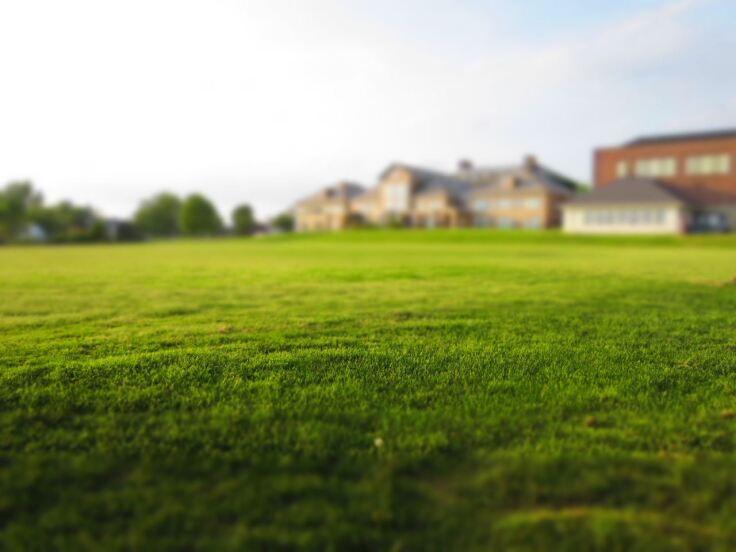 jak dbac o trawnik